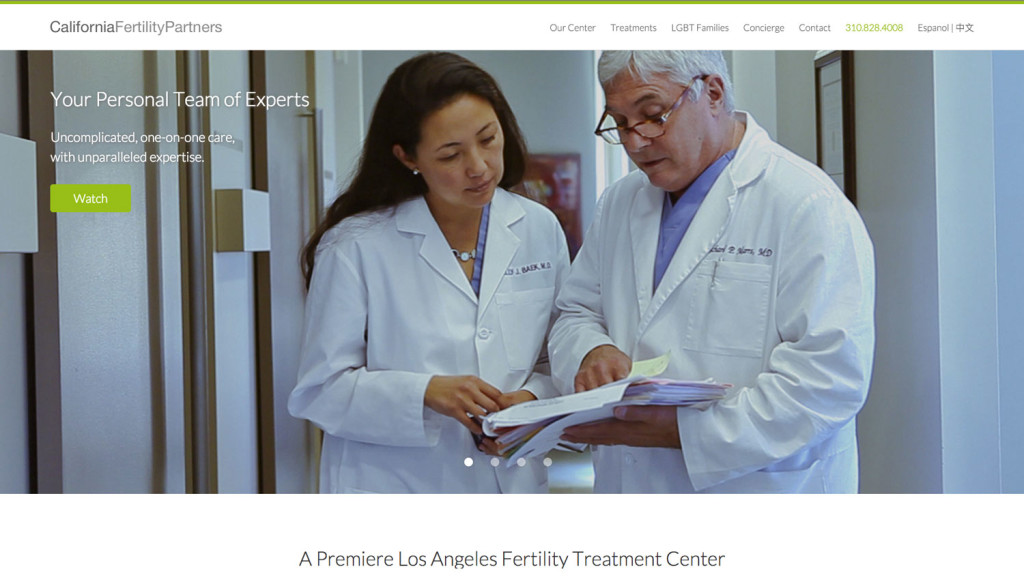 Fertility Clinic Success Story